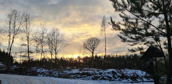 Abendliche Winterstimmung - Januar 2021