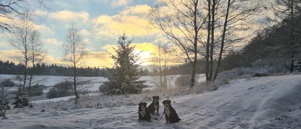 Winterlandschaft bei Ruhla