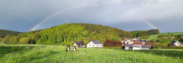 Regenbogen ;-)