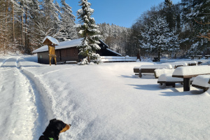 ...so viel Schnee