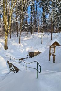 Tröpfelsbörnchen im Winterschlaf
