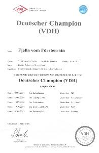 Unser Champion Fjella