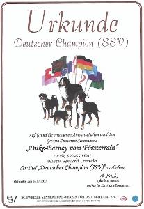 SSV-Champion