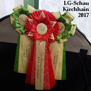 BOB in Kirchhain 2017