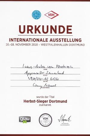 Trixie Herbstsieger Dortmund