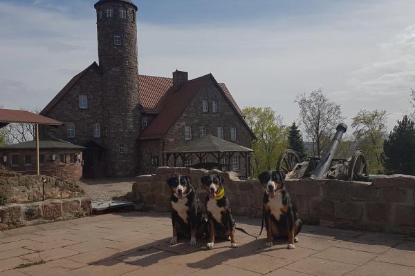 Krayenburg Ostermontag 2020