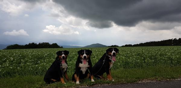 Wolken ziehen auf...