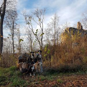 kurz vor der Burg