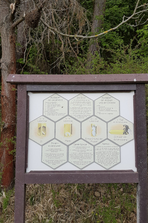 schlaue Bienen