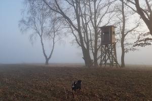 Tiefenort lag im Nebel versteckt