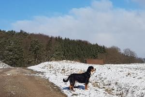 Winterspaziergang rund um Tiefenort