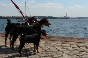 Besuch in Kiel