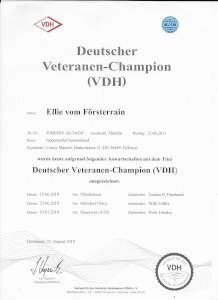 Ellie VDH Veteranenchampion