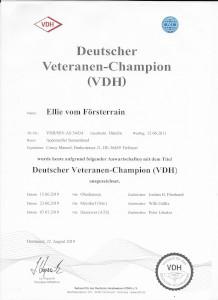 Ellie VDH Veteranenchampion