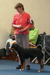Jocy - Vizebundesjugendsieger