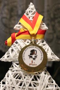 Medaille Kappel