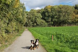 Spaziergang Dortmund