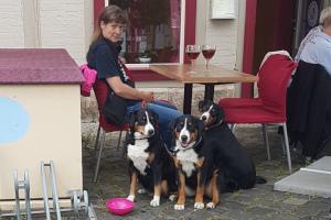 Restaurantbesuch in Halberstadt